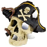 Pirate Skull Aquarium Decoration
