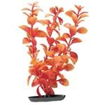 Red Ludwigia Plant: Halloween Themed Aquarium