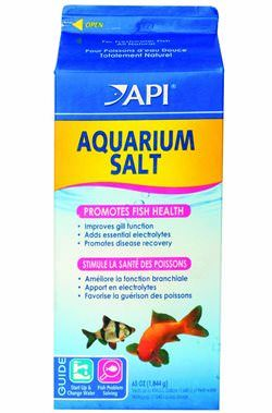Use Aquarium Salt to Treat Ich