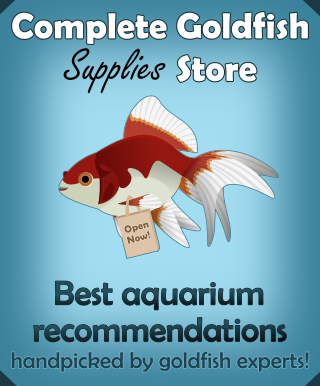 Should You Add Freshwater Aquarium Salt to a Goldfish Tank